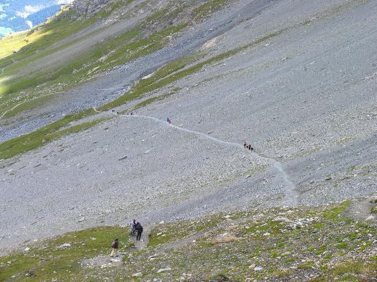 Alpiglen: Eiger Trail