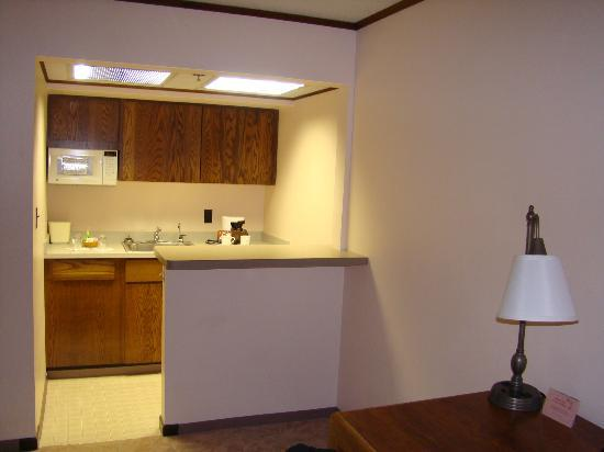 The Voyager Inn: Kitchenette