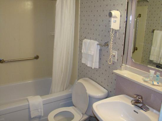 The Voyager Inn: Bathroom