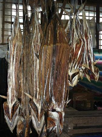 Fish Market : Drying Fish