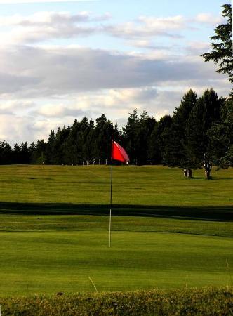 Lopez Island Golf Club: Lots of room