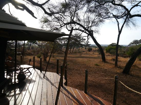 Sanctuary Swala : Room with a view