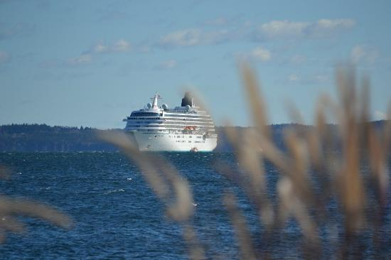 Holiday Inn Bar Harbor Regency: Cruise Ship in Harbor