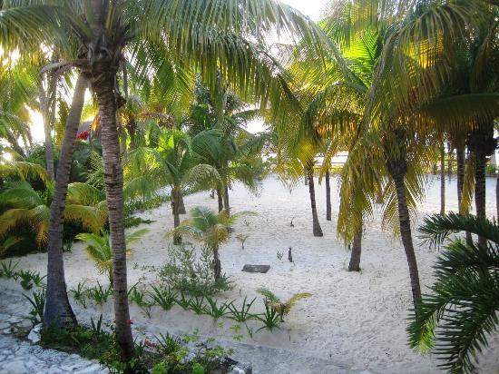 Na Balam Beach Hotel: Vista desde el balcón de mi cuarto