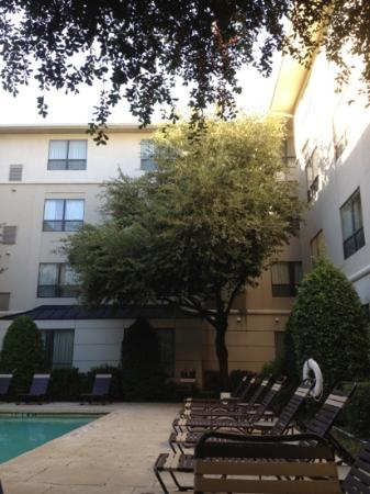 Hyatt House Dallas/Uptown: Poolside in October!