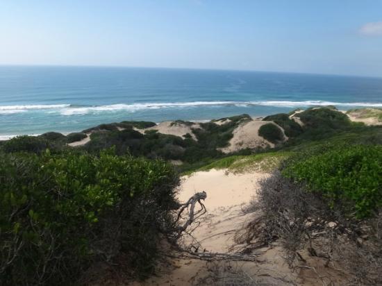 Dunes de Dovela eco-lodge: les dunes