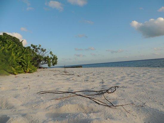 Makunudu Island: .