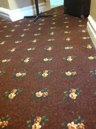 Hotel Villa: unclean halls