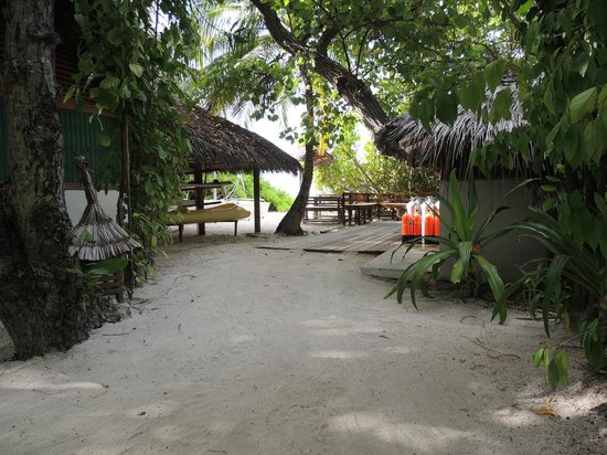 Makunudu Island: Dive centre