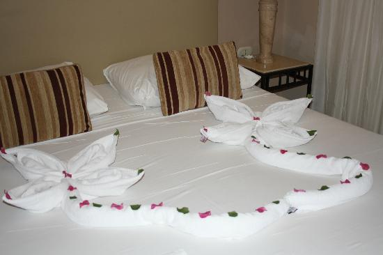 Sol Y Mar Ivory Suites: Definitely a flower bed
