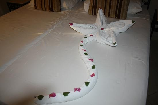 Sol Y Mar Ivory Suites: We were placed on the bed. Was made from towels