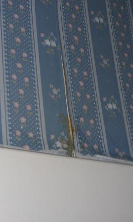 Fireside Inn & Suites, Bangor: peeling musty walpaper in bathroom