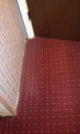 Fireside Inn & Suites, Bangor: hard to see but nasty dusty musty carpet all along most walls