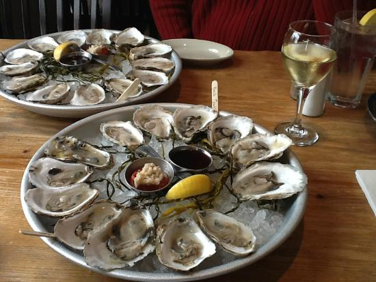Robert's Maine Grill: Maine Oysters and Muscadet at Robert's! Heaven!