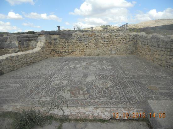 Volubilis: ancient Roman mosaics