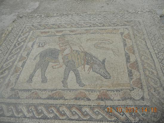 Volubilis: Mosaic of the 12 Labours of Hercules