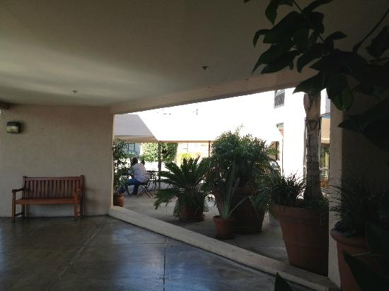 Wingate by Wyndham Los Angeles International Airport LAX: Breezy entrance to hotel