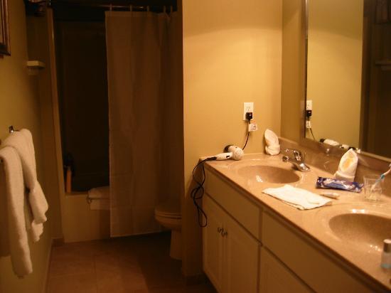 Tanglwood Resort: bathroom downstairs
