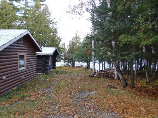 Heston's Lodge: Birch cabin