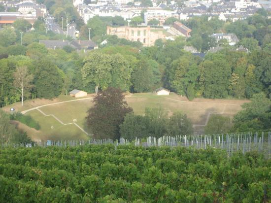 Amphitheater: Downhill view from the vineyards