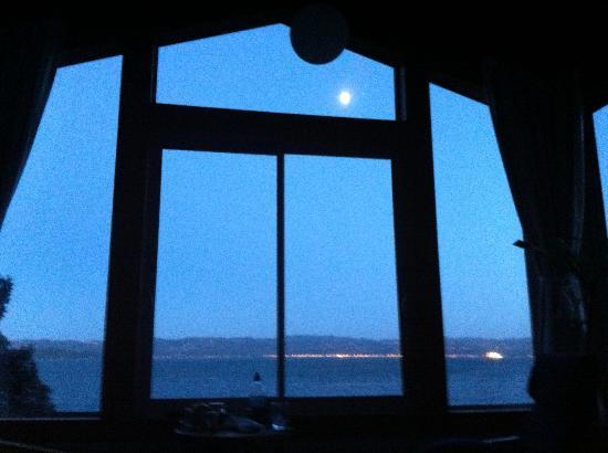 Days Bay Homestay: The moon from the Crows nest