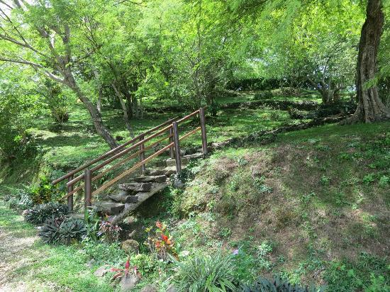 Panacea de la Montana Yoga Retreat & Spa: Stair/path up to Cabina's