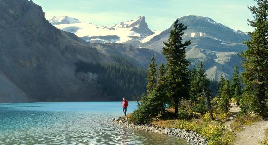 Canadian Rockies, Canada: Bow Lake