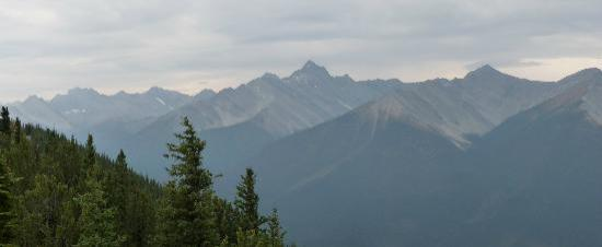 Canadian Rockies, Canada: Top of Sulphar Mountain