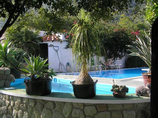 Hotel Villa Janto: Thermalpool und Schwimmbecken