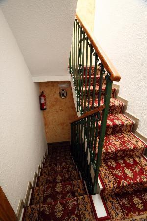 Hostal Lima: stairs
