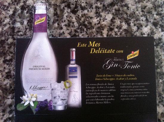 Venta La Miel: Gin tonic