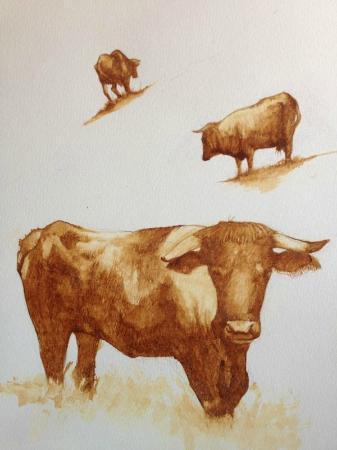 Venta La Miel: Dibujo del artista Diego Hernandez para la carta