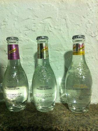 Venta El Colmenar: Las tonicas