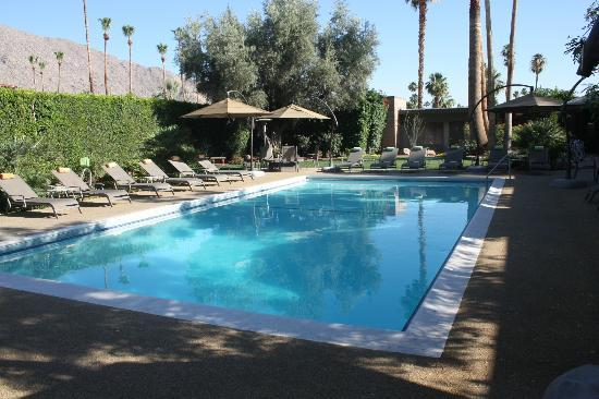 Pool at Desert Riviera Hotel