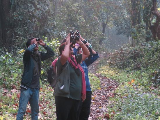 Nameri Eco Camp: with birding guide Sushil