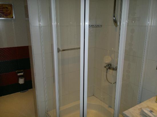 Hilton Alexandria Green Plaza: the shower