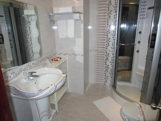 Hanoi City Palace Hotel: bathroom