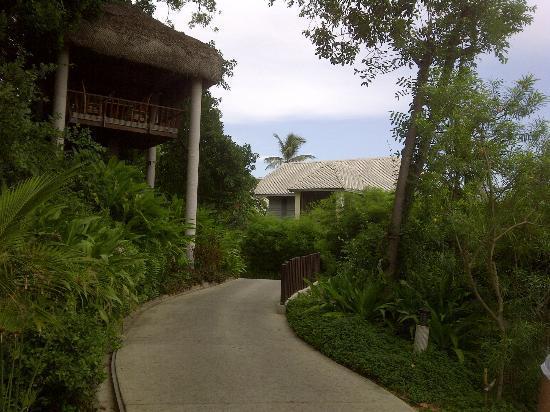 Anantara Lawana Koh Samui Resort: resort view