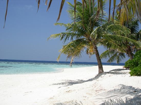 Angsana Ihuru: Beautiful beach