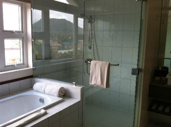 โรงแรมเวเนเซีย: Mayon