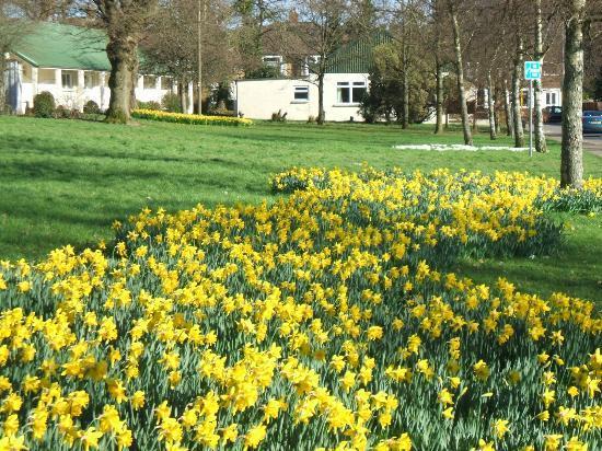 Heath Park