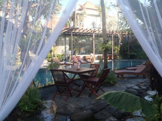 The Bali Dream Villa & Resort: Shared Pool
