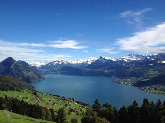 Hotel Villa Honegg: View from room