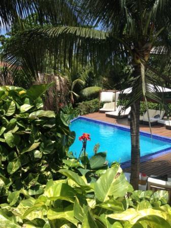 Pousada Teju-Acu: piscina