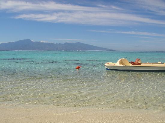 Sofitel Moorea Ia Ora Beach Resort: beach and view of Tahiti