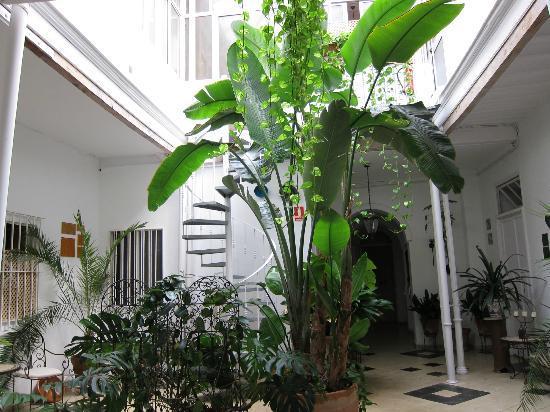 Casa Rosaleda: Interior patio.