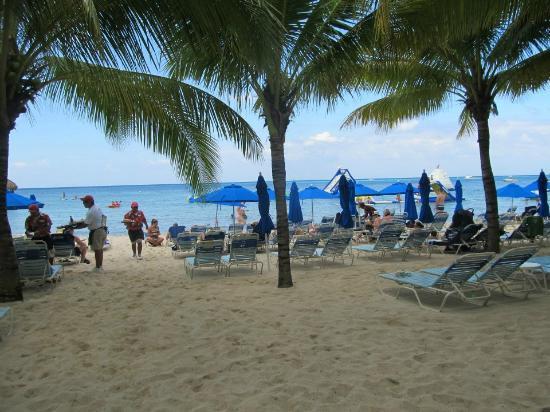 Paradise Beach: The Beach