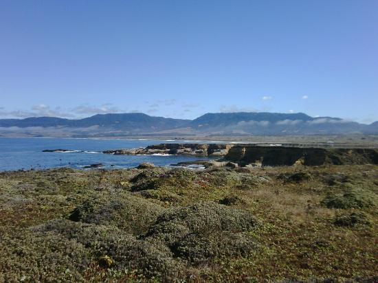 Point Arena Lighthouse : View of the property grounds that you can explore