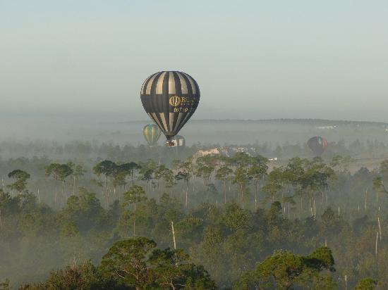 Orlando Balloon Rides: Misty below