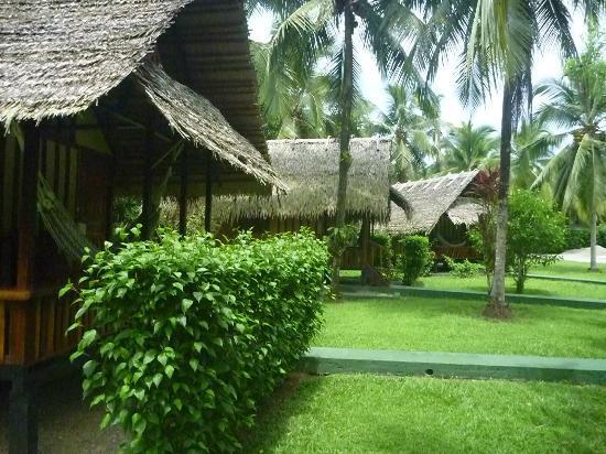Coco Loco Lodge照片